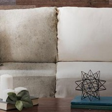 expert-upholstery-cleanig-1
